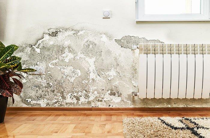 Humedades en pared blanca